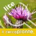 Plant Finder Lite - Images, scientific names, common names of plants